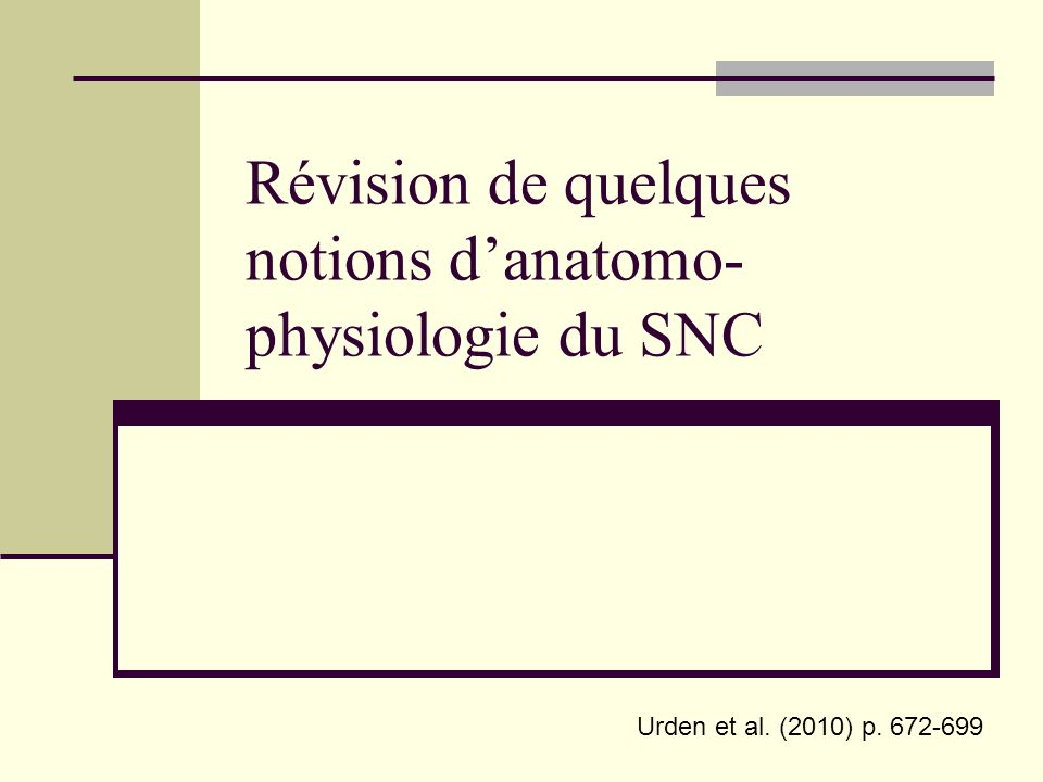 Révision de quelques notions d'anatomo-physiologie du SNC
