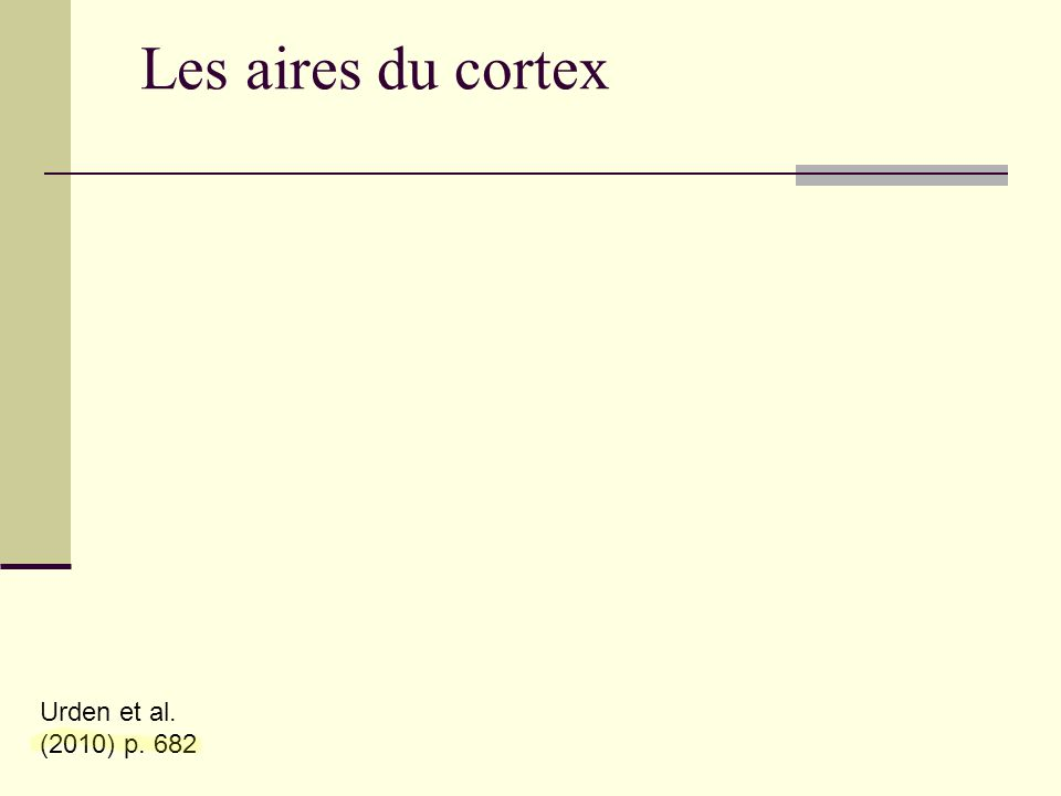 Les aires du cortex Urden et al. (2010) p. 682