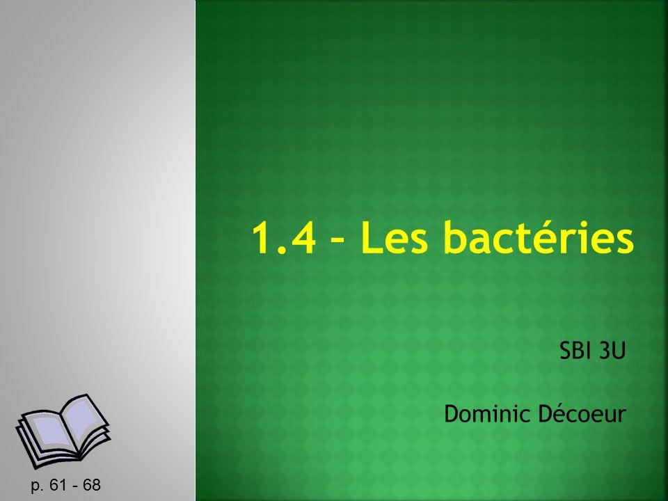 1.4 – Les bactéries SBI 3U Dominic Décoeur p. 61 - 68