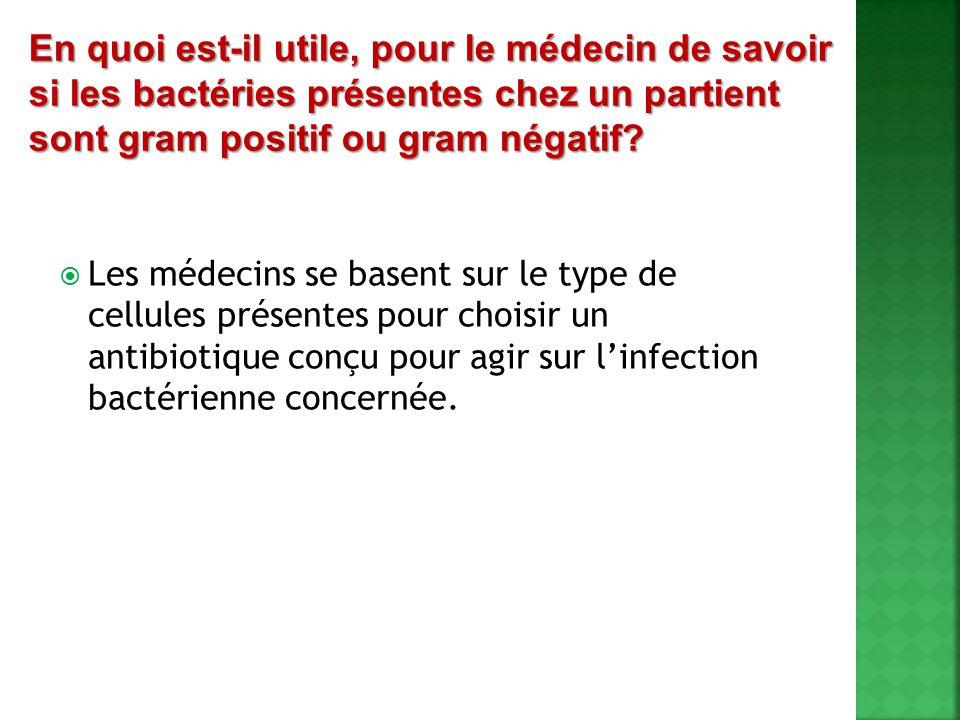 En quoi est-il utile, pour le médecin de savoir si les bactéries présentes chez un partient sont gram positif ou gram négatif