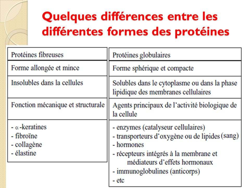 Les proteines ppt video online t l charger - Difference entre convecteur et radiateur ...