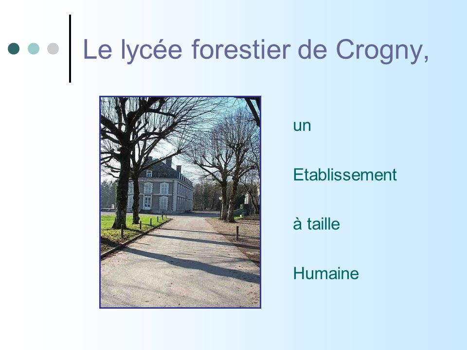 Pr 233 Sentation De La Formation Btsa Gestion Foresti 232 Re Lyc 233 E