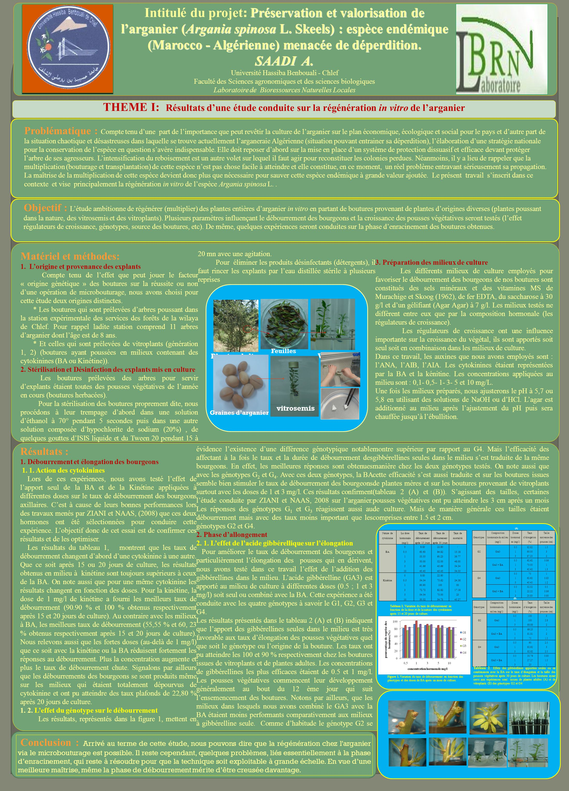 intitul du projet pr servation et valorisation de l arganier argania spinosa l skeels. Black Bedroom Furniture Sets. Home Design Ideas