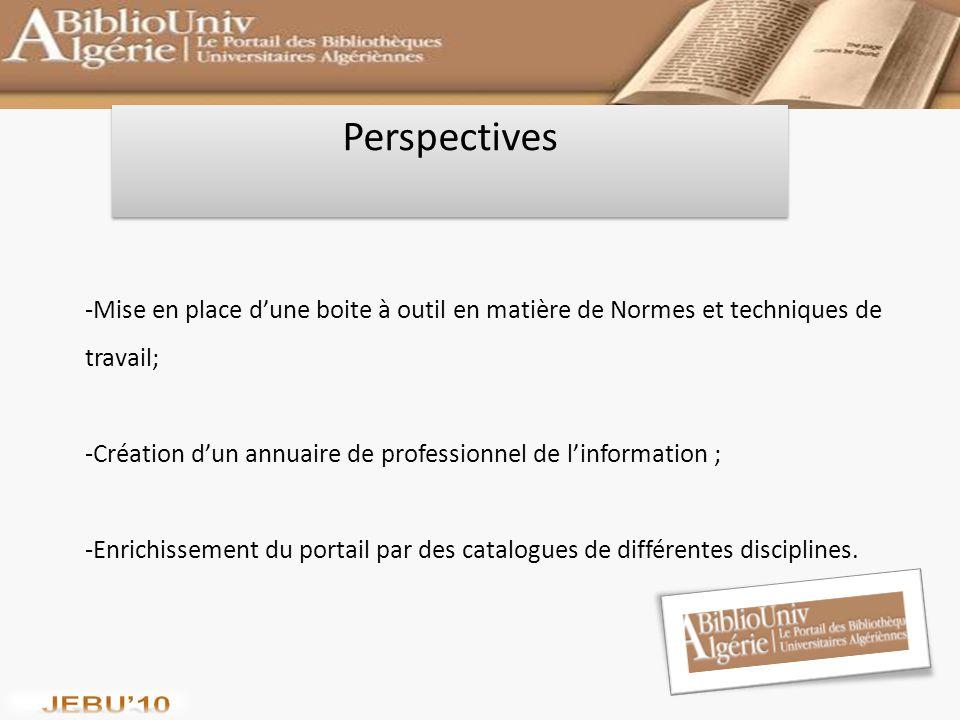 Perspectives Mise en place d'une boite à outil en matière de Normes et techniques de travail;