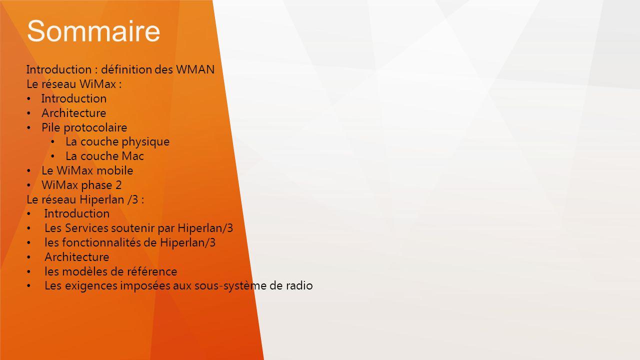 Les r seaux wman ppt t l charger for Definition architecture reseau