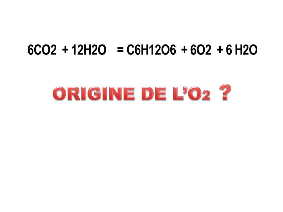 6CO2 + 12H2O = C6H12O6 + 6O2 + 6 H2O ORIGINE DE L'O2