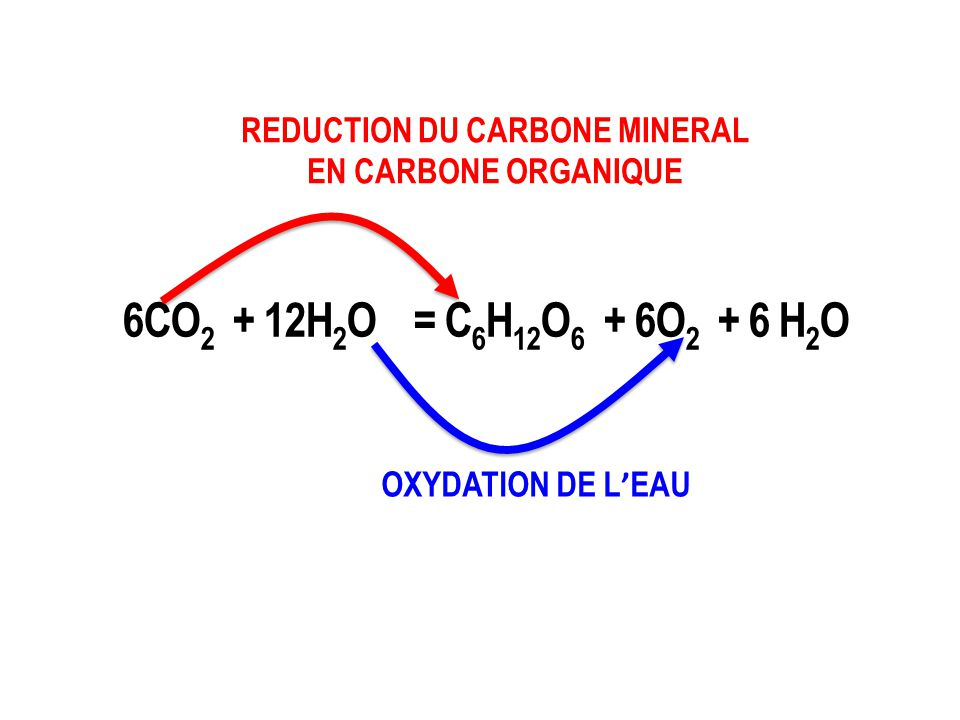 REDUCTION DU CARBONE MINERAL