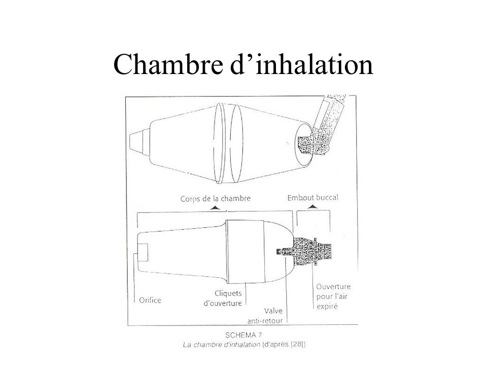 Pharmacie gal nique ppt video online t l charger for Chambre d inhalation