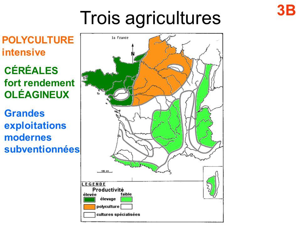 Trois agricultures 3B POLYCULTURE intensive CÉRÉALES fort rendement