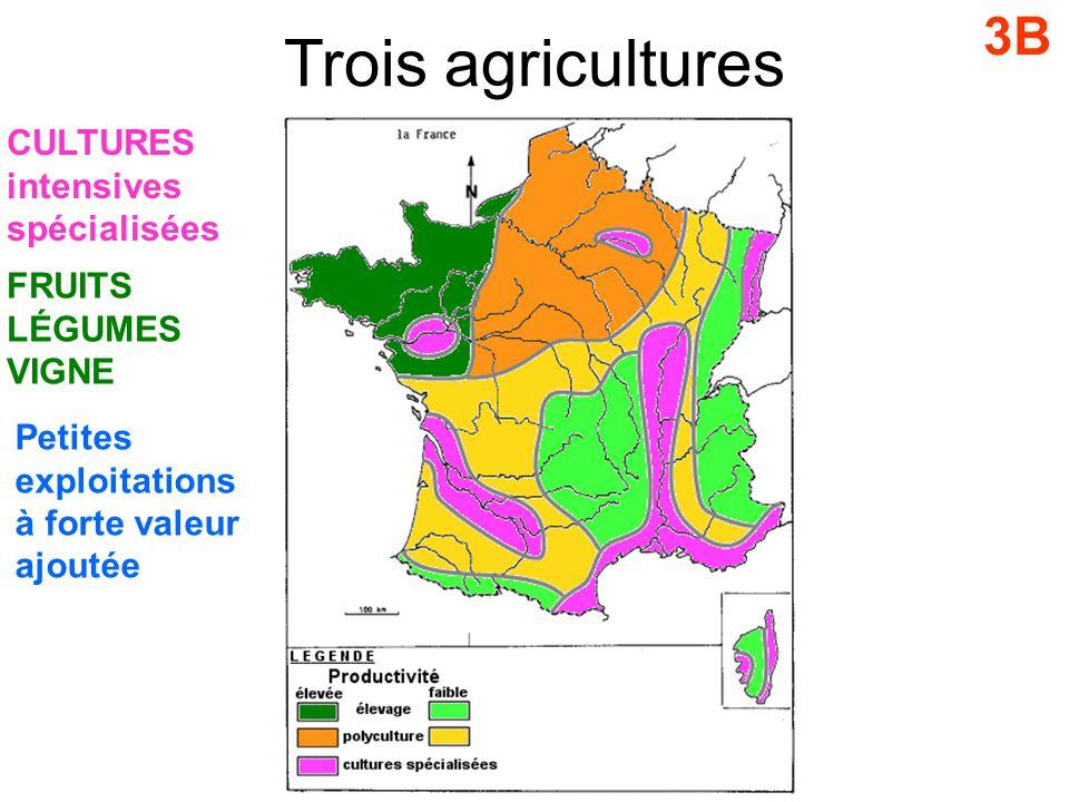 Trois agricultures 3B CULTURES intensives spécialisées FRUITS LÉGUMES