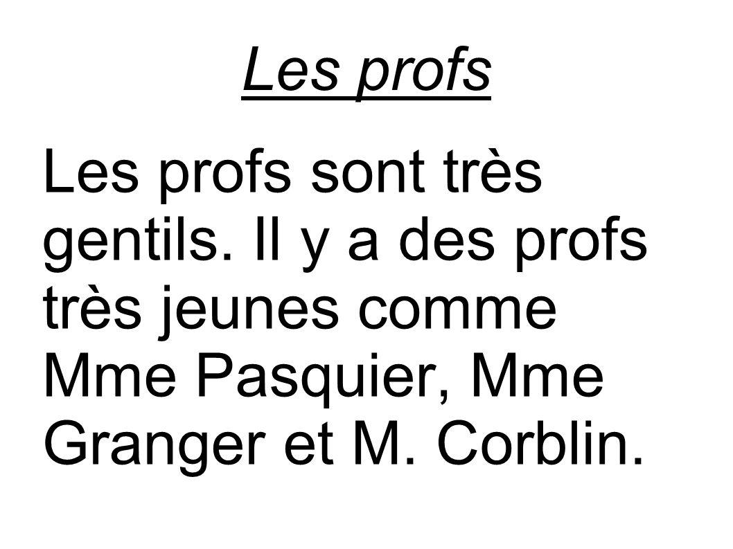 Les profs Les profs sont très gentils.