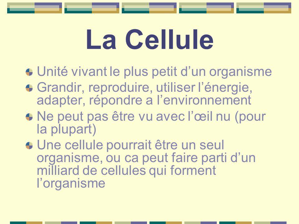 La Cellule Unité vivant le plus petit d'un organisme