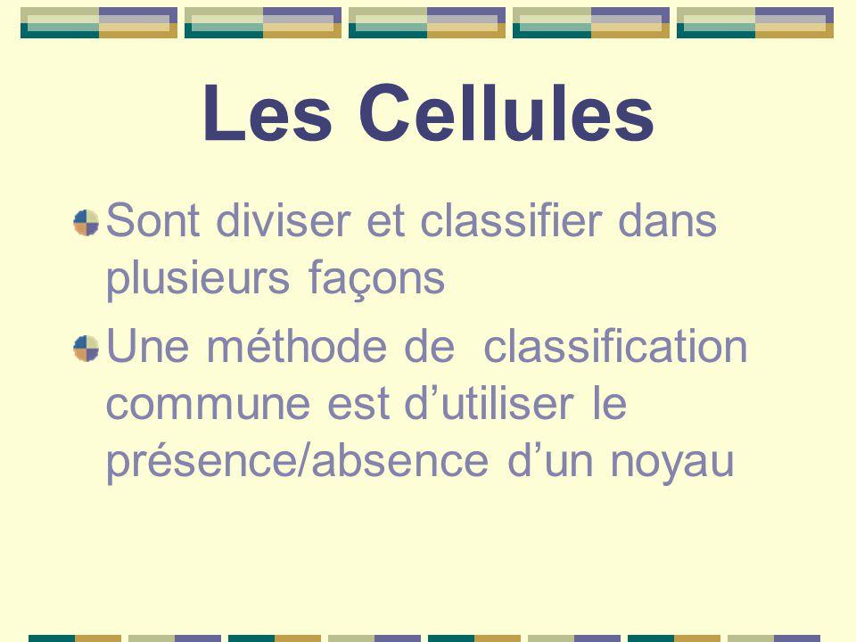 Les Cellules Sont diviser et classifier dans plusieurs façons