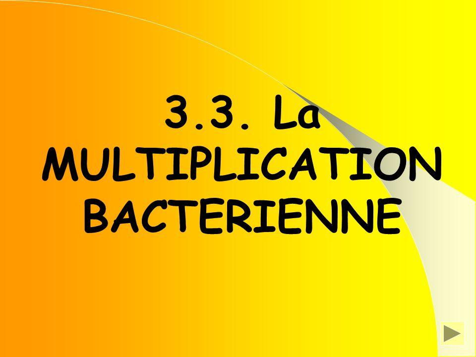 3.3. La MULTIPLICATION BACTERIENNE