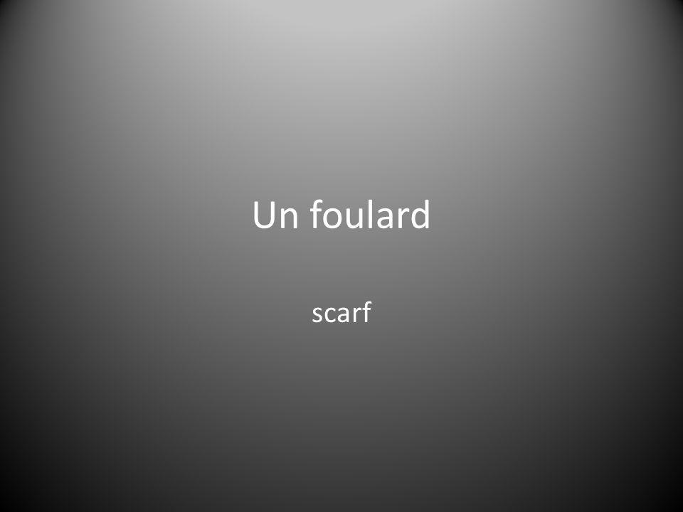 Un foulard scarf
