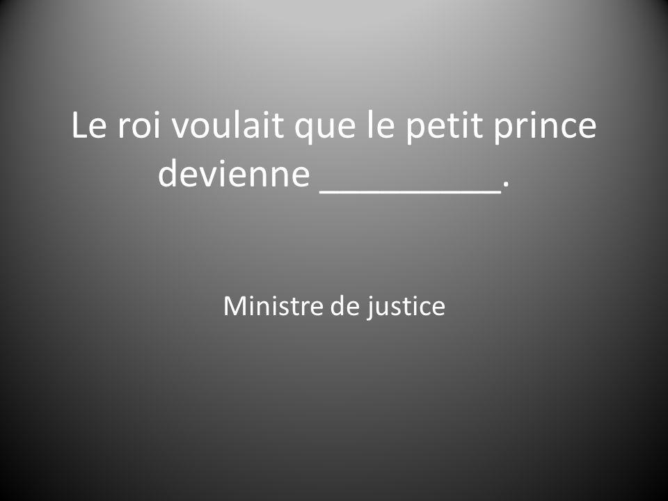 Le roi voulait que le petit prince devienne _________.
