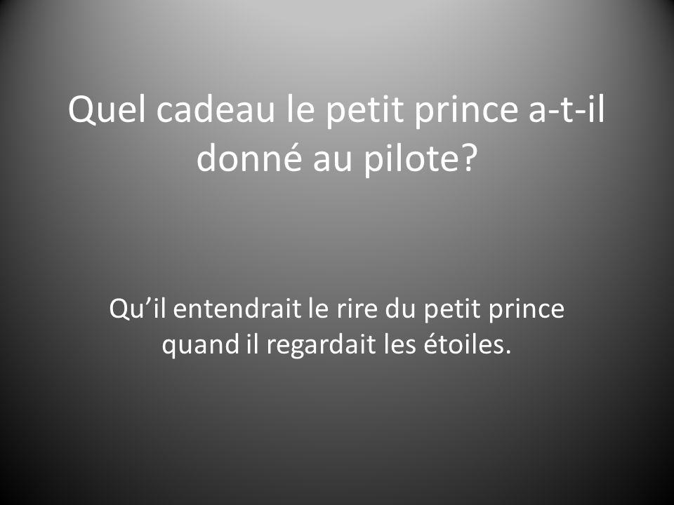 Quel cadeau le petit prince a-t-il donné au pilote