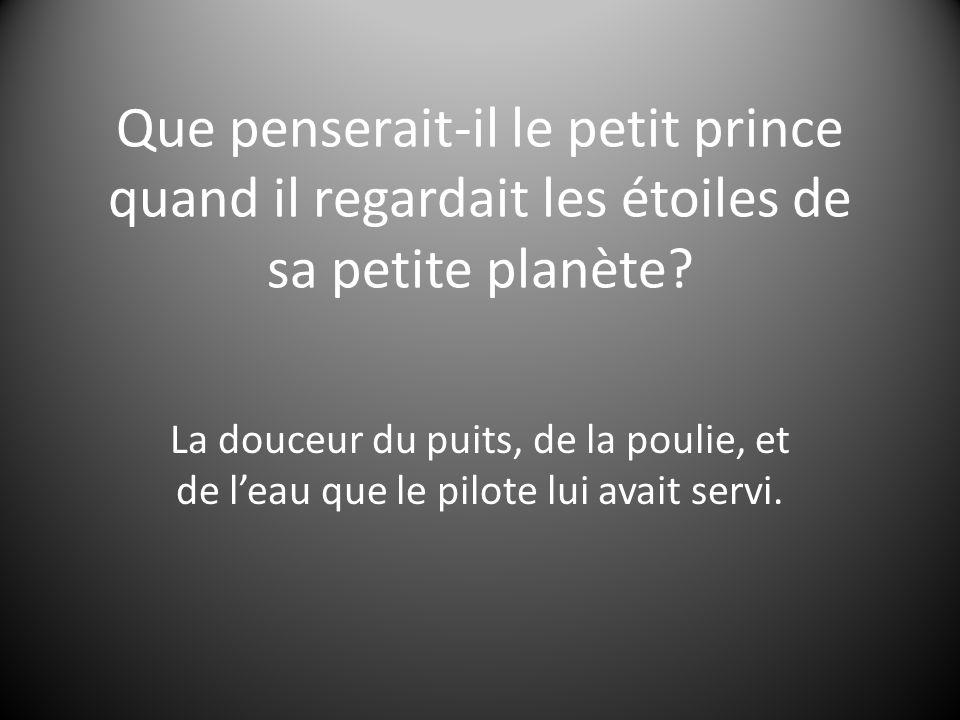 Que penserait-il le petit prince quand il regardait les étoiles de sa petite planète