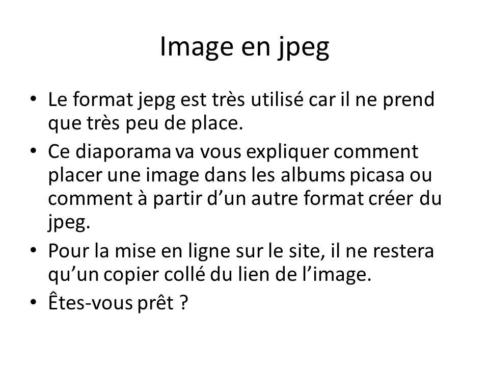 Image en jpeg Le format jepg est très utilisé car il ne prend que très peu de place.
