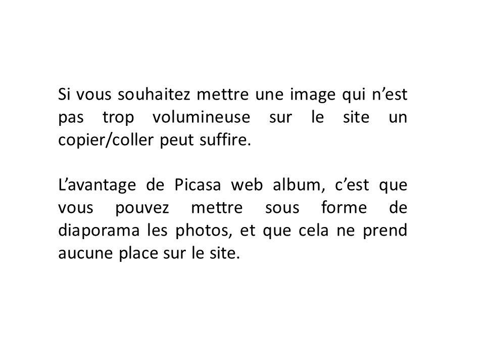 Si vous souhaitez mettre une image qui n'est pas trop volumineuse sur le site un copier/coller peut suffire.