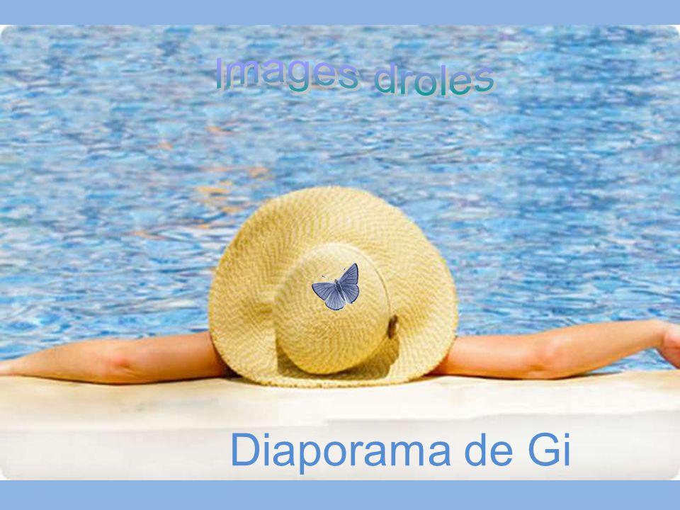 Images droles Diaporama de Gi