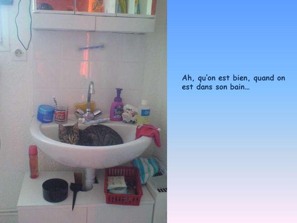 Ah, qu'on est bien, quand on est dans son bain…