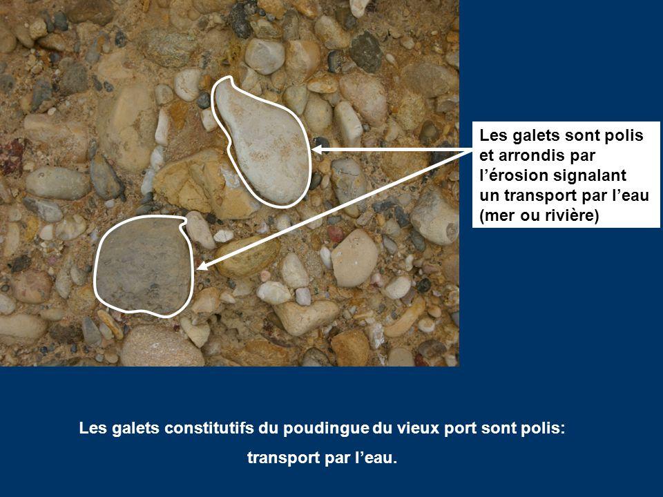 Histoire g ologique de marseille ppt video online t l charger - Les appartements du vieux port ...