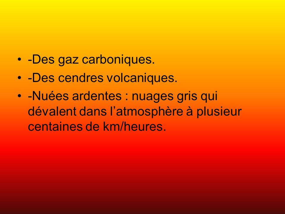 -Des gaz carboniques. -Des cendres volcaniques.