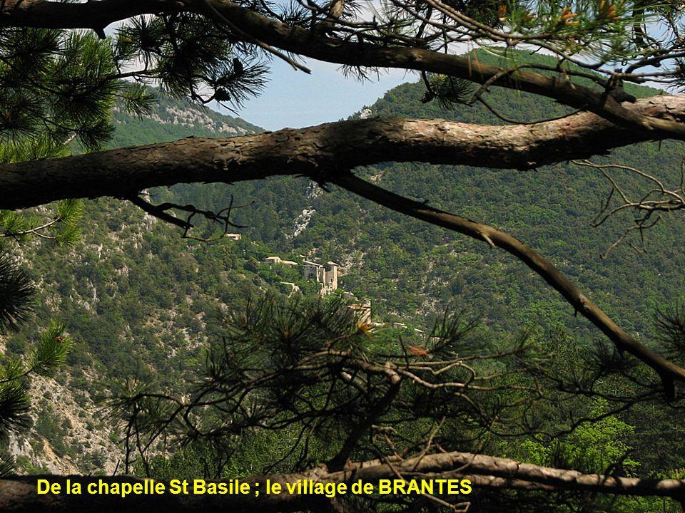 De la chapelle St Basile ; le village de BRANTES