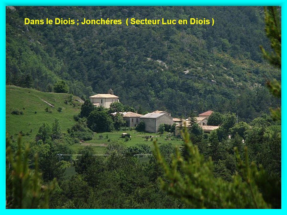 Dans le Diois ; Jonchéres ( Secteur Luc en Diois )