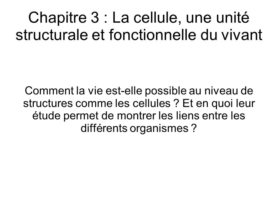 Chapitre 3 : La cellule, une unité structurale et fonctionnelle du vivant