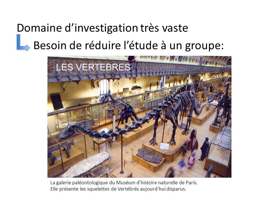 Domaine d'investigation très vaste Besoin de réduire l'étude à un groupe: