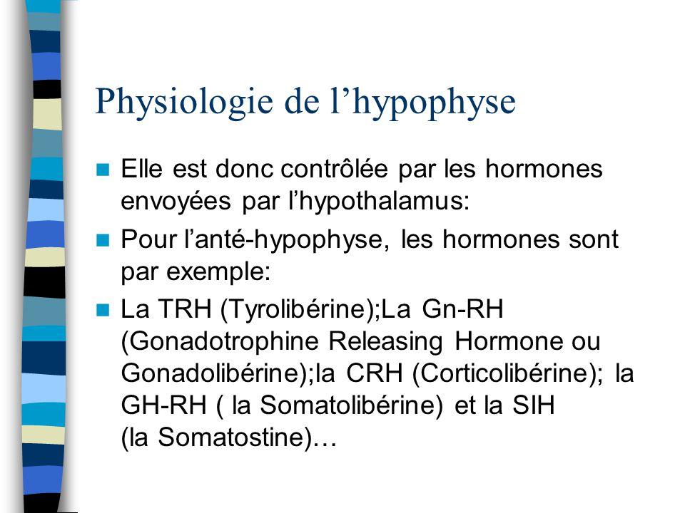 Fantastisch Hormone Der Hypophyse Galerie - Menschliche Anatomie ...