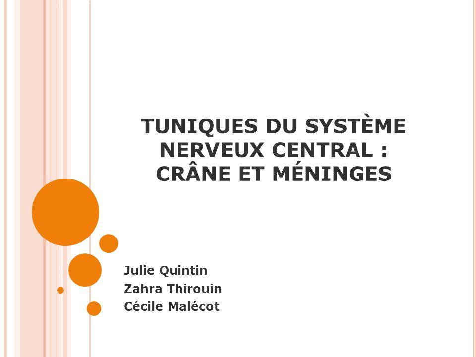 TUNIQUES DU SYSTÈME NERVEUX CENTRAL : CRÂNE ET MÉNINGES