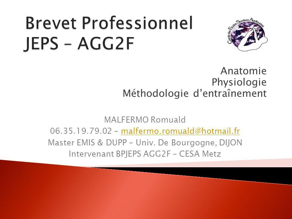 Brevet Professionnel JEPS – AGG2F