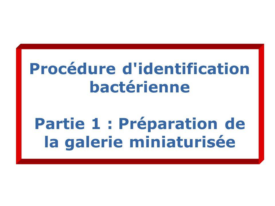 Procédure d identification bactérienne