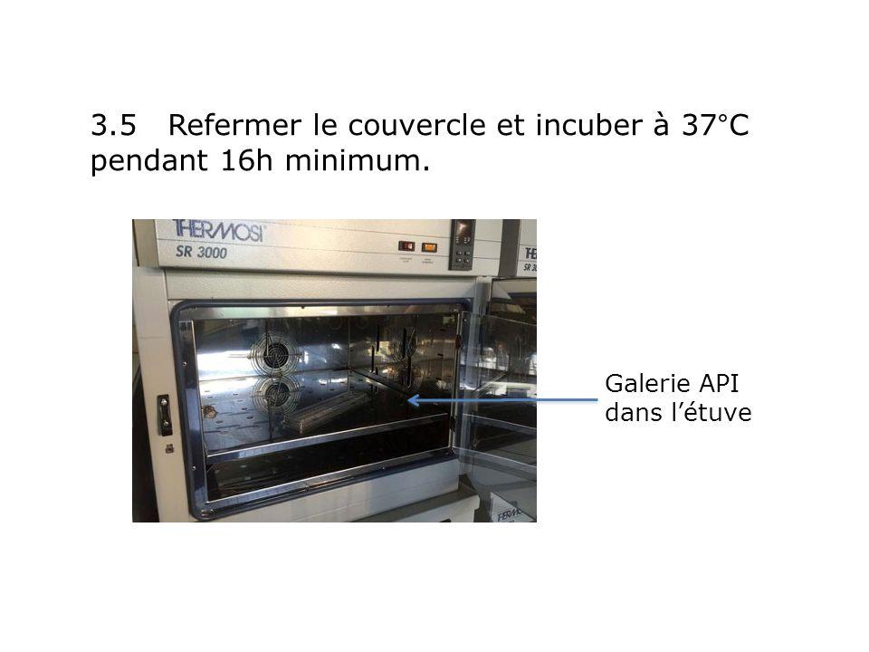 3.5 Refermer le couvercle et incuber à 37°C pendant 16h minimum.