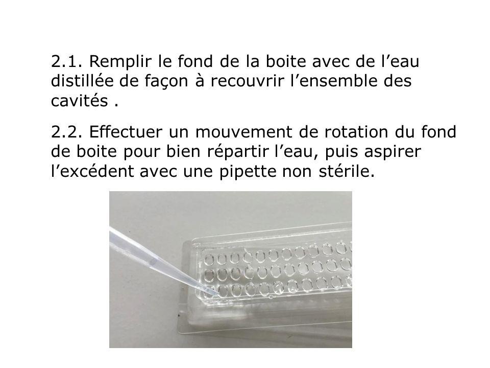 2.1. Remplir le fond de la boite avec de l'eau distillée de façon à recouvrir l'ensemble des cavités .