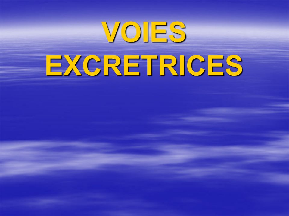 VOIES EXCRETRICES
