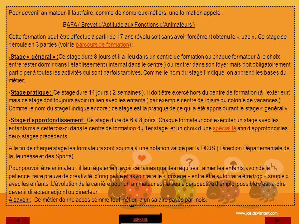 BAFA ( Brevet d'Aptitude aux Fonctions d'Animateurs )