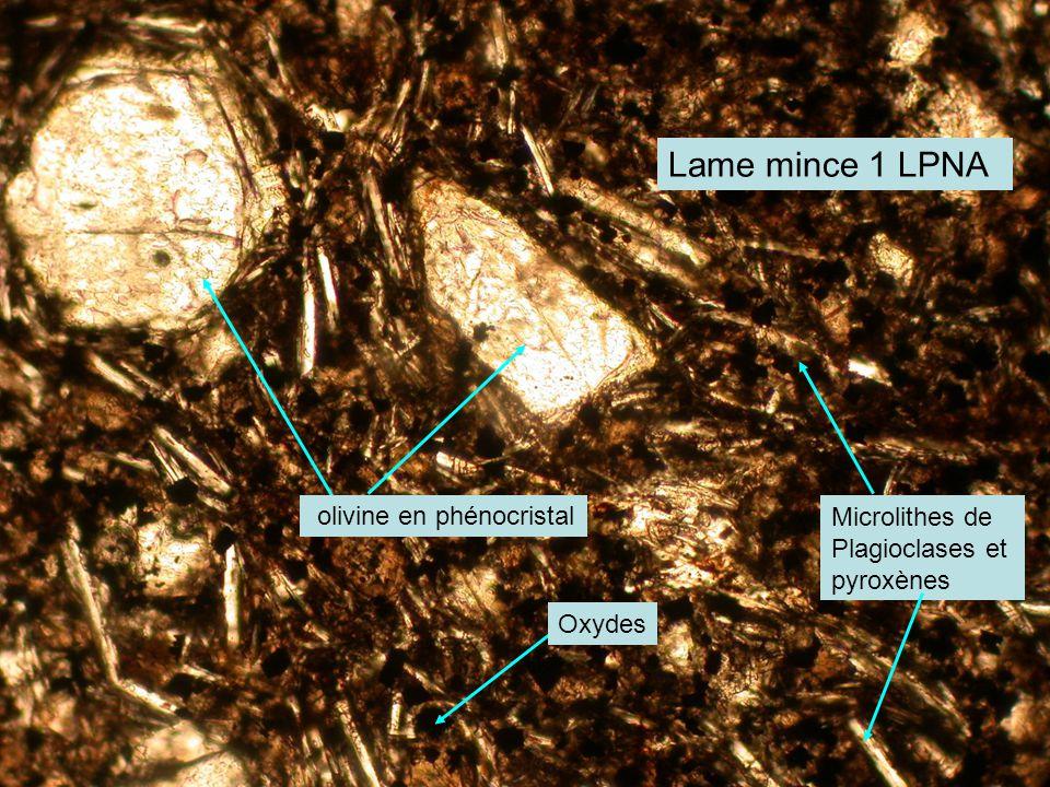 Lame mince 1 LPNA olivine en phénocristal Microlithes de