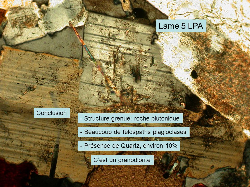 Lame 5 LPA Conclusion - Structure grenue: roche plutonique