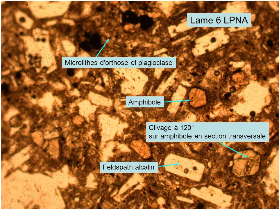 Lame 6 LPNA Microlithes d'orthose et plagioclase Amphibole