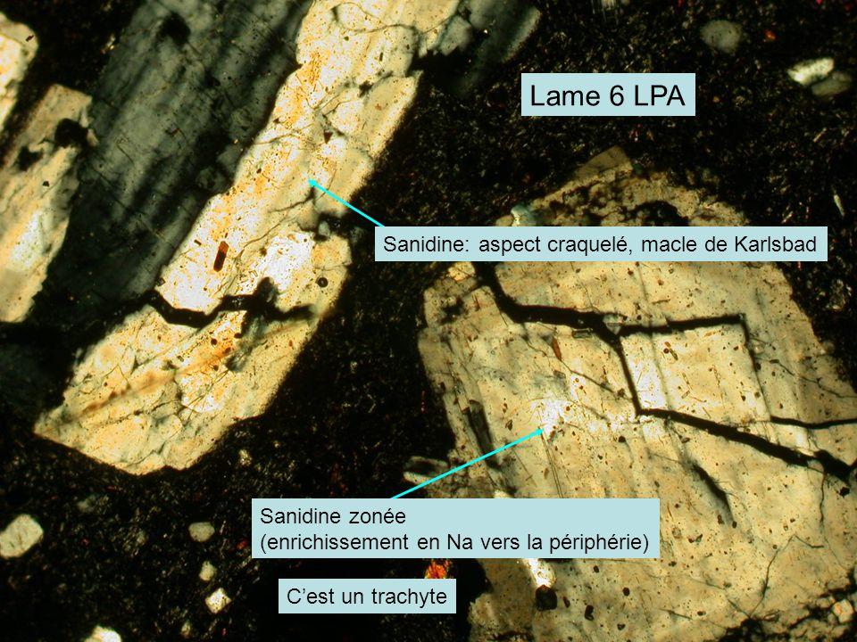 Lame 6 LPA Sanidine: aspect craquelé, macle de Karlsbad Sanidine zonée