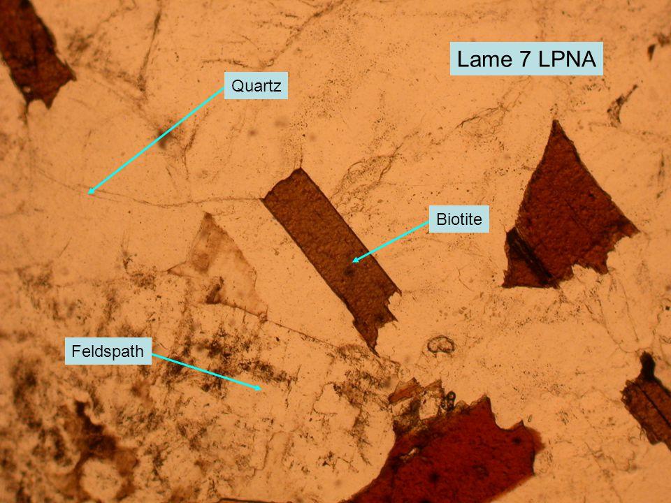 Lame 7 LPNA Quartz Biotite Feldspath