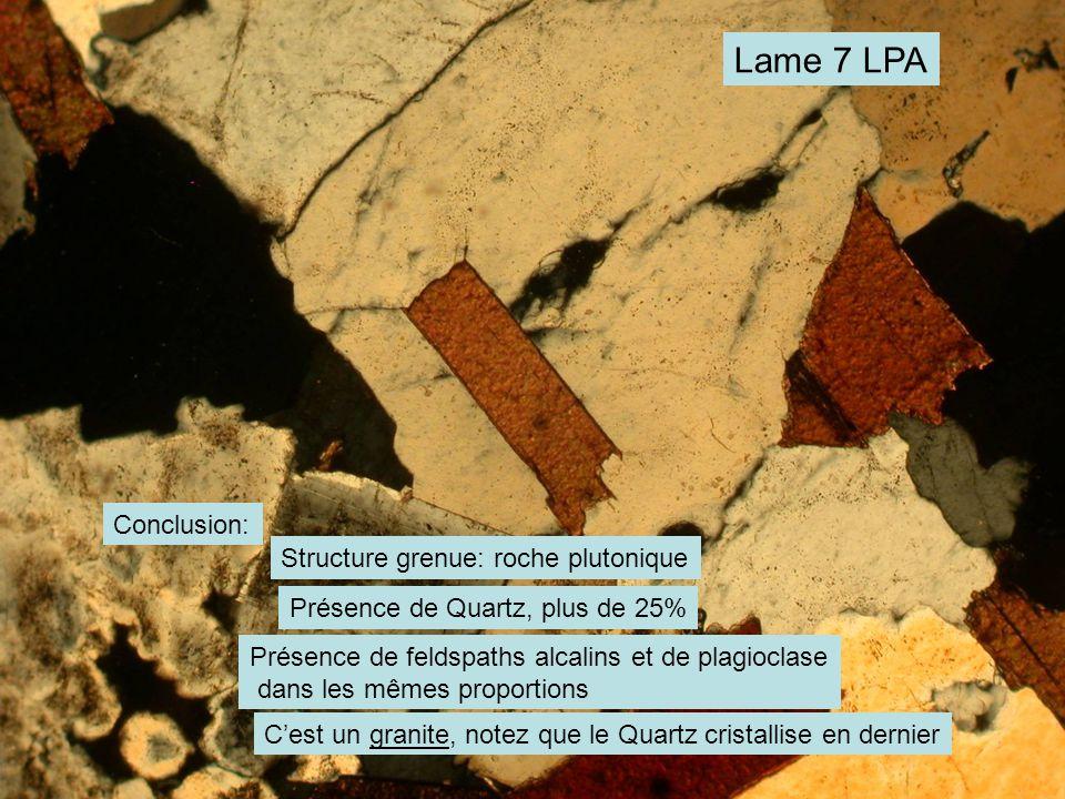 Lame 7 LPA Conclusion: Structure grenue: roche plutonique