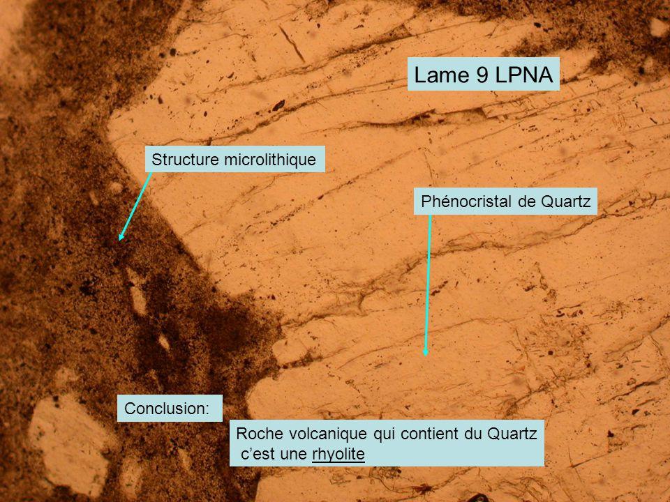Lame 9 LPNA Structure microlithique Phénocristal de Quartz Conclusion: