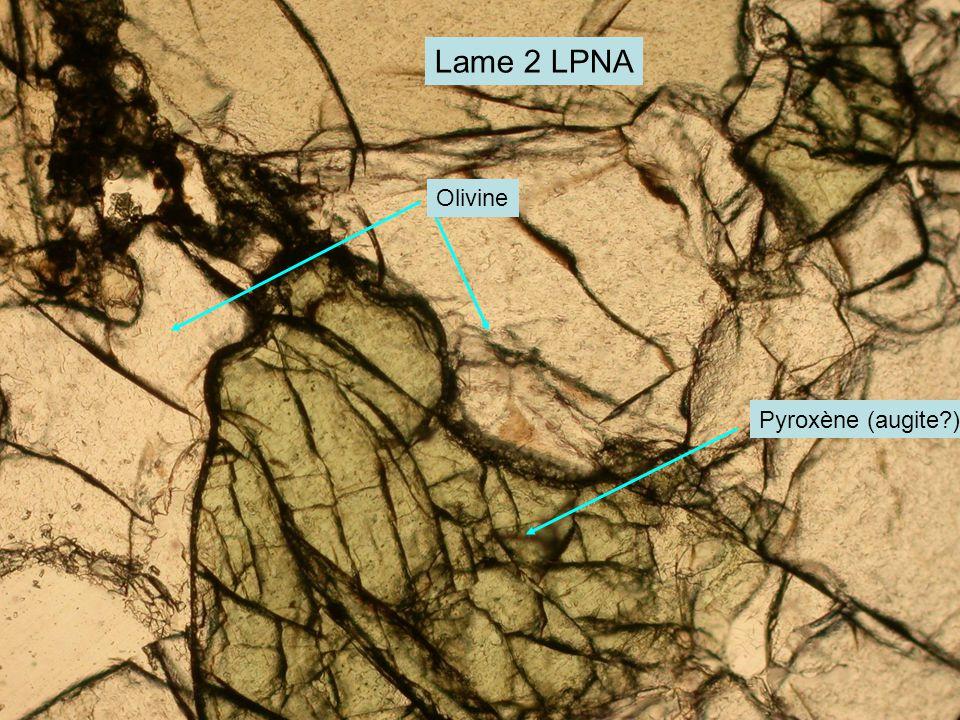 Lame 2 LPNA Olivine Pyroxène (augite )
