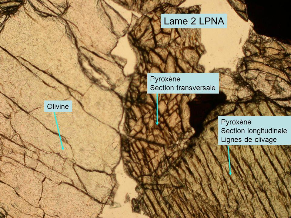 Lame 2 LPNA Pyroxène Section transversale Olivine Pyroxène
