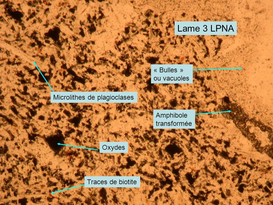 Lame 3 LPNA « Bulles » ou vacuoles Microlithes de plagioclases